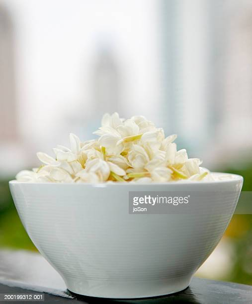 Bowl of jasmine flowers (Stephanotis floribunds)