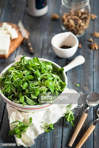 Bowl of lambs lettuce, Valerianella locusta