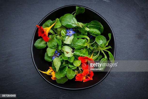 Bowl of lamb's lettuce with blossoms of borage and Indian cress