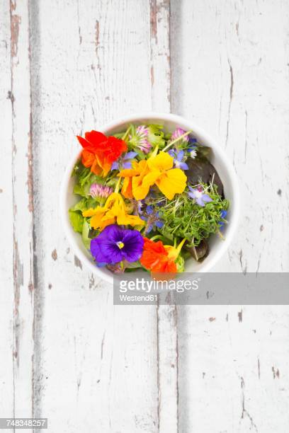bowl of leaf salad with various edible flowers - pansy stock pictures, royalty-free photos & images