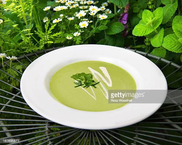Bowl of mint pea soup