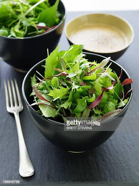 Bowl of mixed greens salad