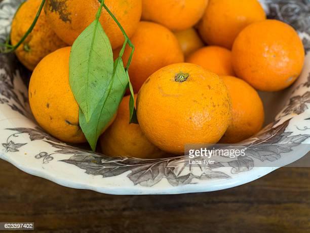 PASSOPISCIARO SICILY ITALY A bowl of oranges at Grazi Wines outside of Passopisciaro on the northern slopes of Mount Etna