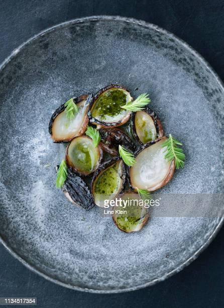 bowl of oysters with herbs - klein bildbanksfoton och bilder