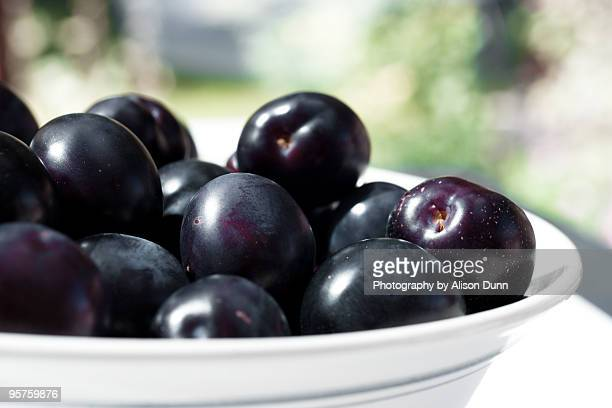 Bowl of purple plums
