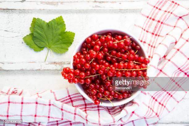 bowl of red currants - johannisbeere stock-fotos und bilder