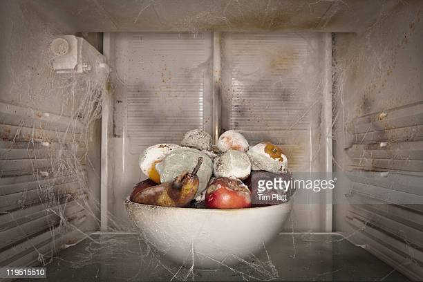 bowl of rotting fruit in a dirty fridge. - rot stock pictures, royalty-free photos & images