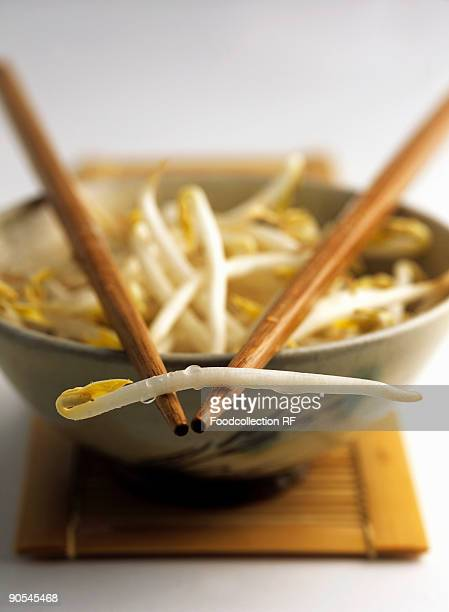 bowl of soya sprouts with chopsticks (differential focus) - bean sprout stock pictures, royalty-free photos & images