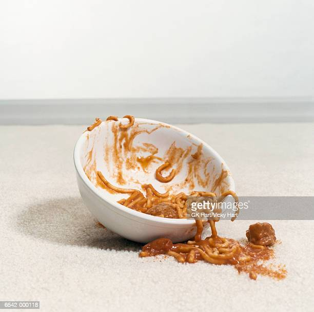 Bowl of Spaghetti on Carpet