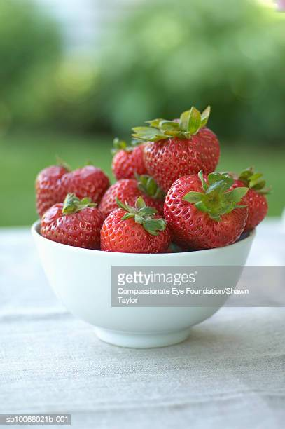 "bowl of strawberries on table outdoors - ""compassionate eye"" stock-fotos und bilder"