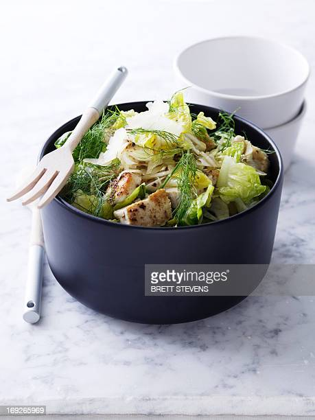 Bowl of swordfish and fennel salad