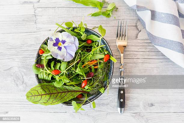 bowl of wild-herb salad with edible flowers, cranberries and wolfberries - pansy stock pictures, royalty-free photos & images