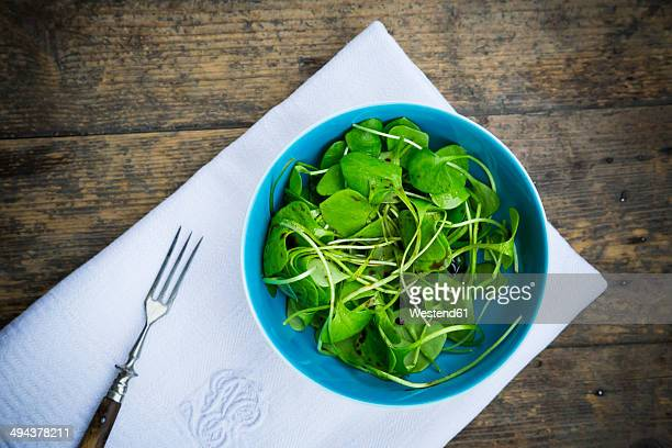 Bowl of winter purslane salad (Claytonia perfoliata) on white cloth napkin and wooden table, view from above