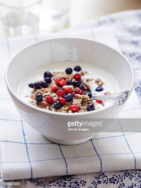 Bowl of yogurt with cereal and berries
