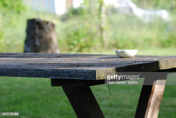 bowl on picnic table at park - picnic table stock pictures, royalty-free photos & images