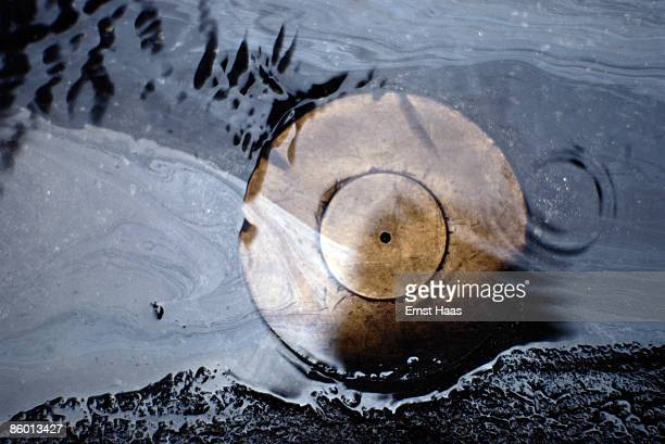 A bowl upturned in water Mexico City January 1982