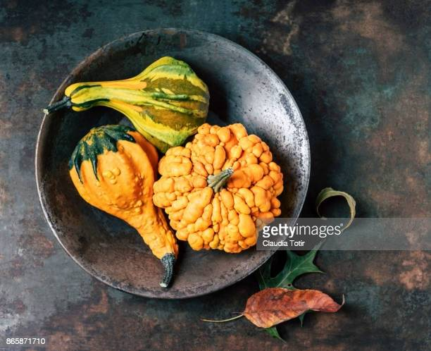 Bowl with decorative gourds