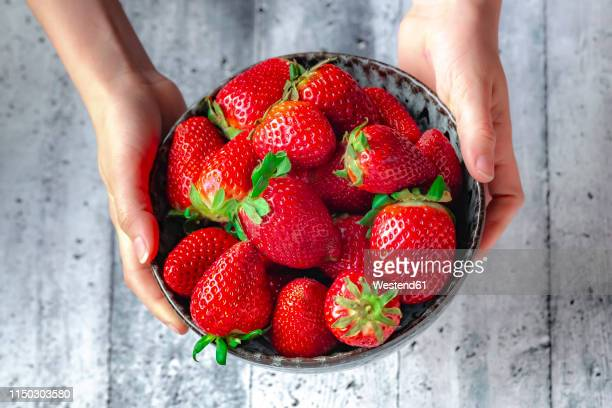bowl with fresh strawberries, hands of a girl - hitting stock pictures, royalty-free photos & images