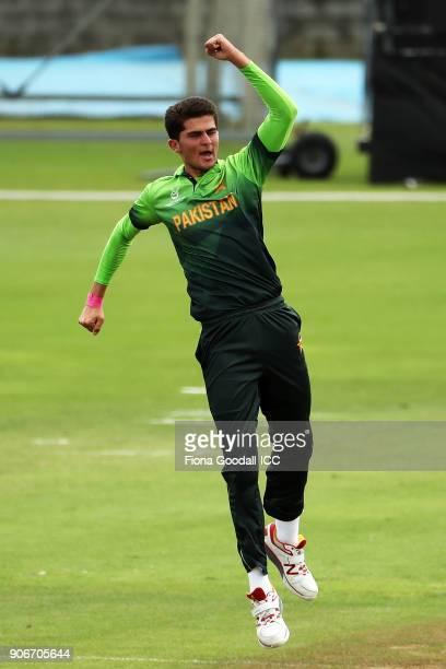Bowler Shaheen Shan of Pakistan celebrates taking the wicket of Krishan Sanjula of Sri Lanka during the ICC U19 Cricket World Cup match between Sri...