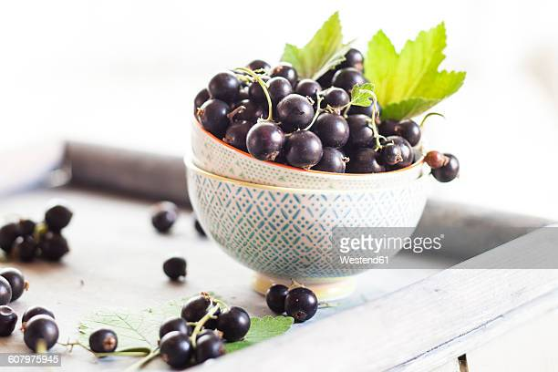 Bowls of black currants with leaves on a tray