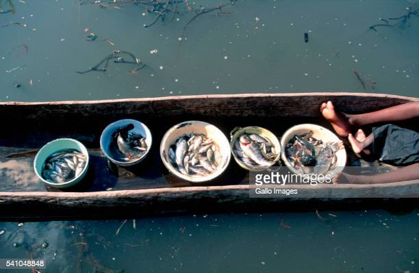 Bowls of Fish in Dugout Canoe
