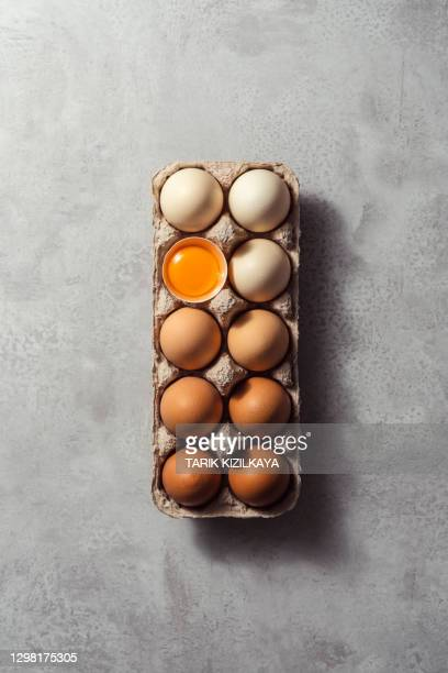 box of eggs on grey background - easter egg stock pictures, royalty-free photos & images