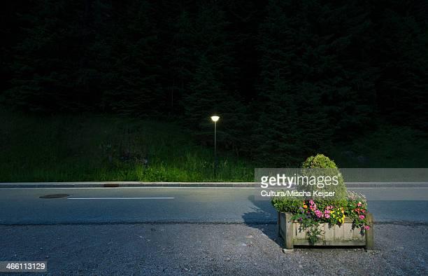 Box of flowers by roadside, Salzburg, Austria