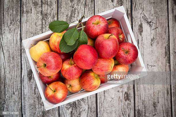 Box of red apples on wood