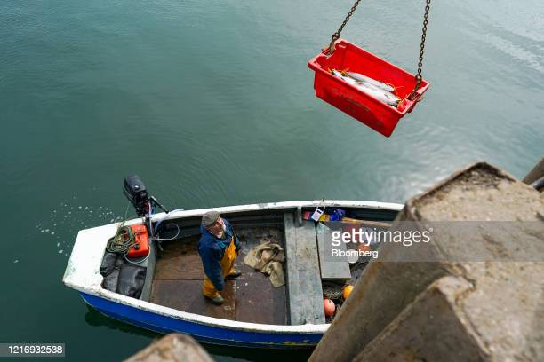 A box of Sea Trout is winched from a boat in the harbour in Scarborough UK on Tuesday June 2 2020 The threat of a nodeal Brexit is back and with it...