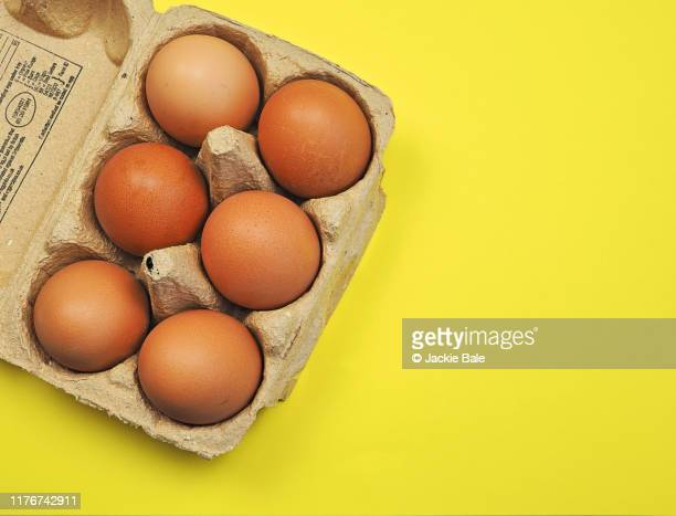 box of six eggs on a yellow background - oeuf photos et images de collection