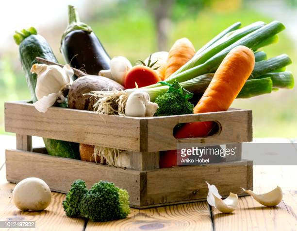 box of vegetables - vegetable stock pictures, royalty-free photos & images