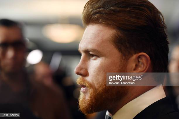 Boxer Canelo Alvarez posess during a news conference at Microsoft Theater at LA Live to announce the upcoming rematch against Gennady Golovkin on...