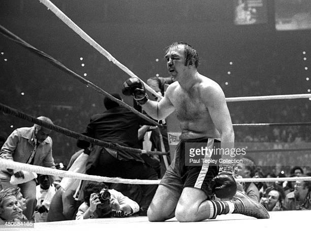 Boxer Chuck Wepner kneels the canvas after the 15th round of a heavyweight title fight on March 24 1975 against Muhammad Ali at the Richfield...