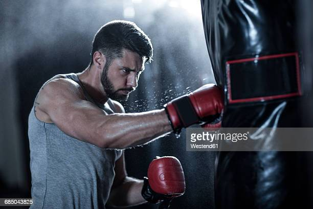 Boxer exercising with punch bag