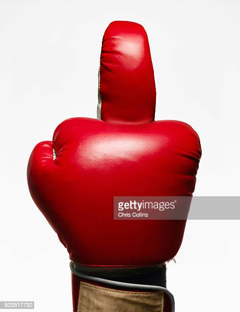 boxer flipping the bird - obscene gesture stock photos and pictures