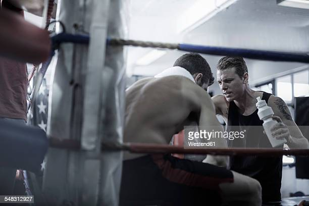 Boxer having a break with trainer in the corner of the boxing ring