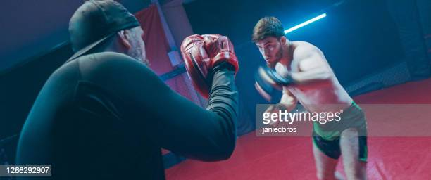 boxer pad work session with personal trainer. quick punches - kicking stock pictures, royalty-free photos & images