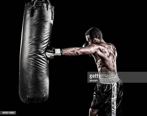 boxer training - punching stock pictures, royalty-free photos & images
