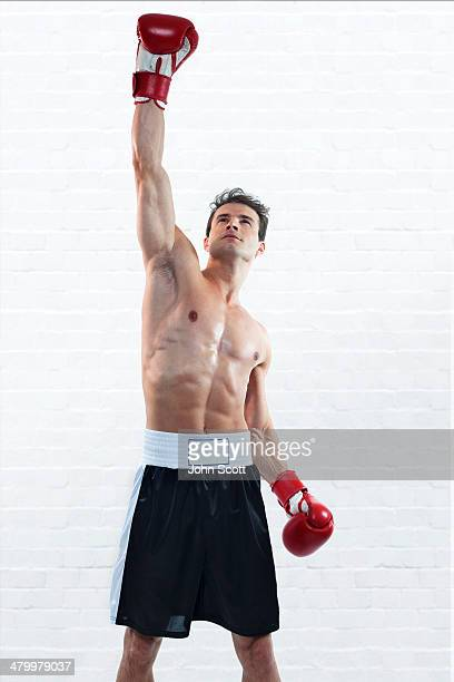 Boxer training with gloves, victory celebration