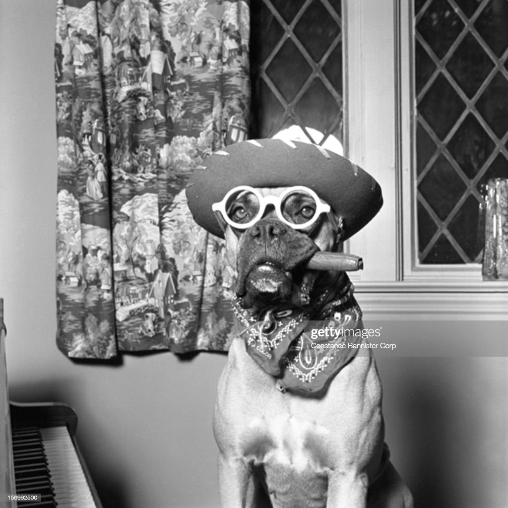 A boxer wearing a cowboy hat and spectacles with a cigar and neckerchief, New York City, USA, 1950.