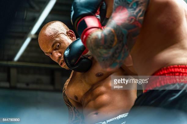 Boxer contro anello da pugilato