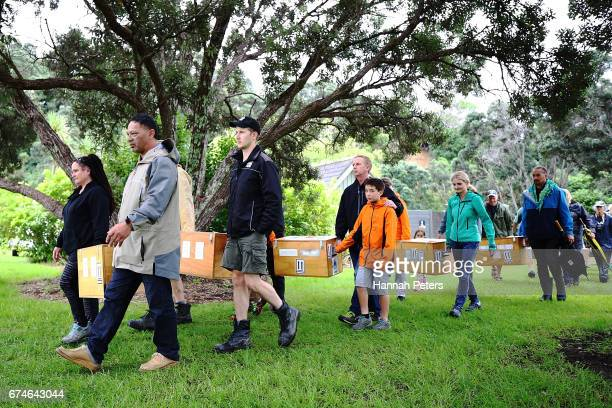 Boxes carrying little spotted Kiwi birds are carried before their release at Shakespear Open Sanctuary on April 29 2017 in Auckland New Zealand The...
