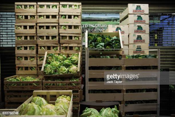 Boxes of cauliflower and Romanesco broccoli are in crates for sale at the New Covent Garden fruit and vegetable wholesale market Nine Elms on...
