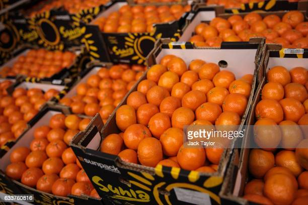 Boxes of clementines are packaged for sale at the New Covent Garden fruit and vegetable wholesale market, Nine Elms on February 4, 2017 in London,...