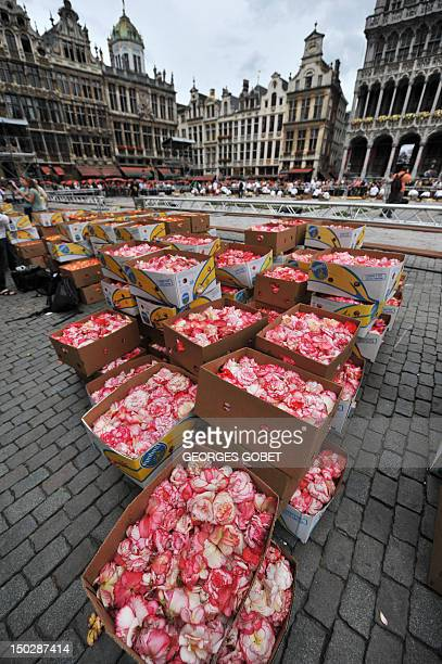 Boxes of flowers are seen on the GrandPlace in Brussels covered on August 14 2012 by a huge carpet of some 2000 m2 of flowers in the colours of...