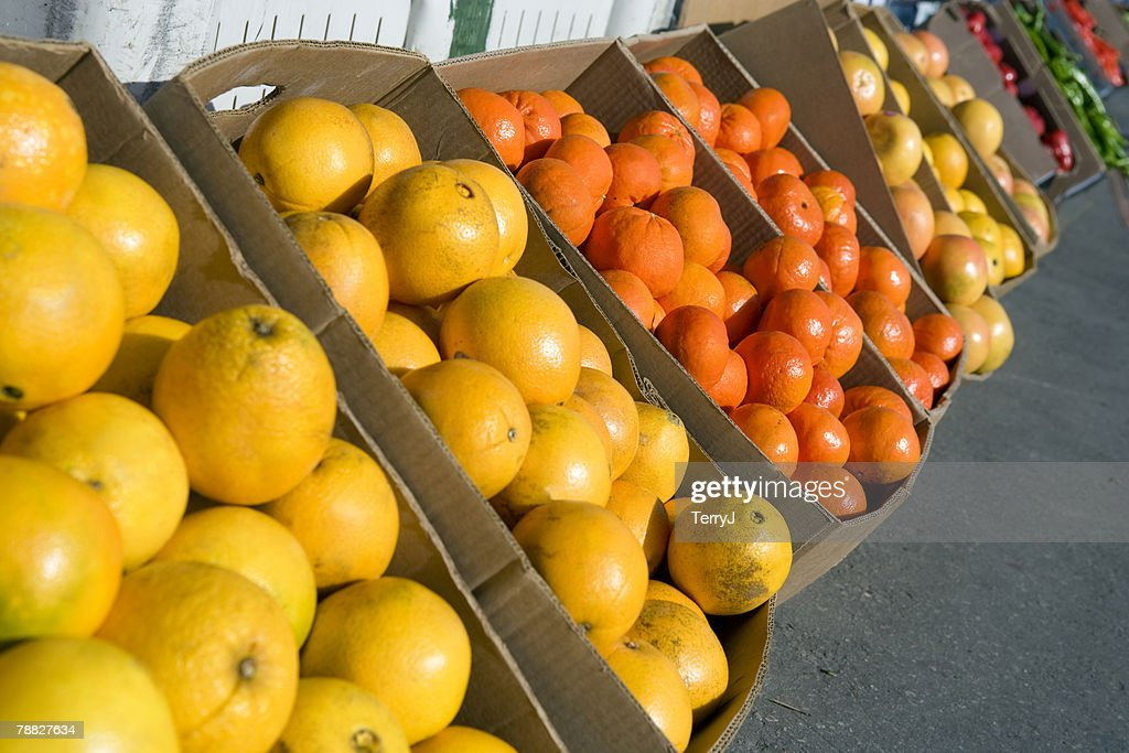 boxes of oranges tangerines grapefruit and different types of