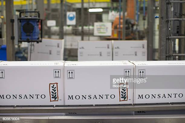 Boxes of Roundup weed killer bottles move along the production line at the herbicide manufacturing facility operated by Monsanto Co in Antwerp...