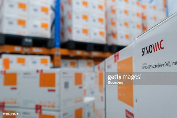 Boxes of the Sinovac Biotech Ltd. Covid-19 vaccine are stored in the cold storage room of a warehouse at the Pharmaniaga Logistics Bhd. Facility in...