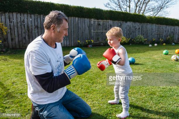 boxing buddies - combat sport stock pictures, royalty-free photos & images