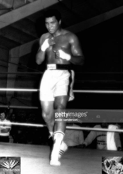 Boxing champion and legend Muhammad Ali sparring in the ring during training for his fight with Larry Holmes at Caesars Palace Resort and Hotel in...